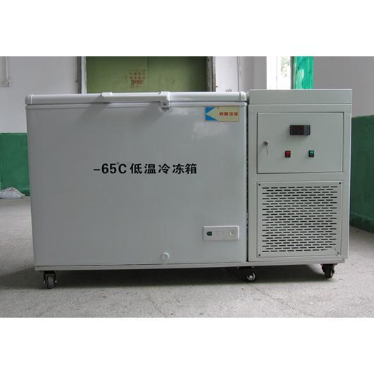 低温冷冻箱-65℃