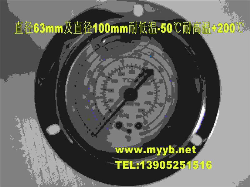 不锈钢耐震油压表冷媒表