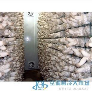 食用菌养殖库-冷库工程-空调制冷大市场