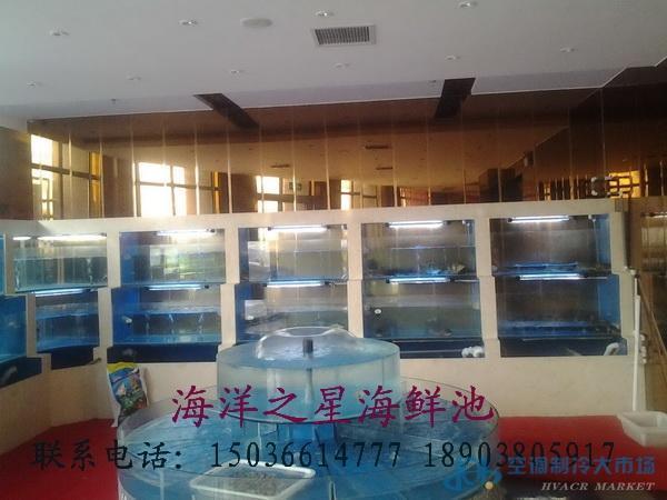 海鲜池 海鲜鱼缸