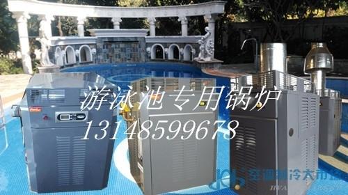 raypak瑞帕克游泳池加热型专用锅炉
