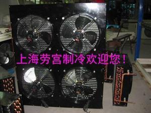 湖南�L冷凝器FNH100平方
