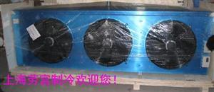 四川品牌冷风机DD160平方