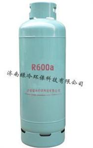R600a(60kg)