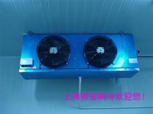 茶叶库专用吊顶冷风机DL25平方
