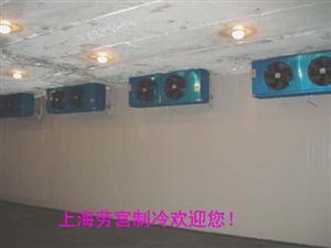 冷藏冷库吊顶冷风机DL105平方
