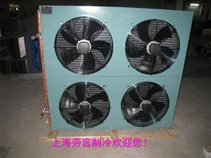 FNH-200平方风冷冷凝器
