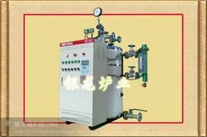 电加热蒸汽炉