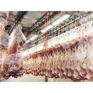 云南食品低温冷藏冷库安装工程