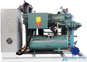 比泽尔低温螺杆压缩冷凝机组
