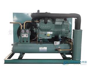 比泽尔20P双级风冷冷凝制冷机组