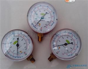 威科R410a高压单表