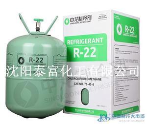 中龙制冷剂 R22 国产R22