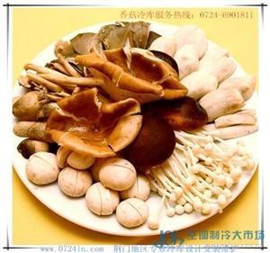 荆门地区香菇的冷藏保鲜香菇冷库专业设计安装