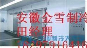 安徽淮南海鲜冷库工程设计