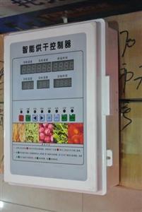 山东 广东烘干除湿一体机 苹果干烘干机