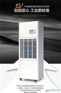 除湿机DP-10S 抽湿器仓库吸湿干燥