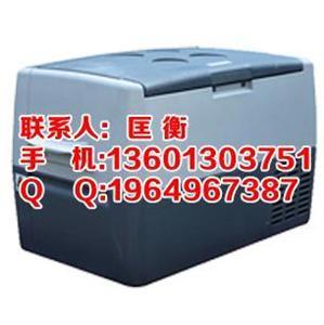 车载试剂低温冷链箱(记录仪打印)