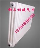 GZ306/X-1.0钢制柱型散热器