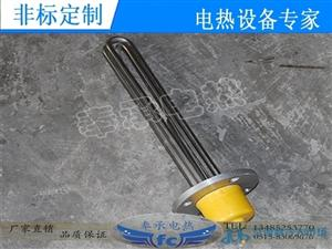 不锈钢316法兰电热管