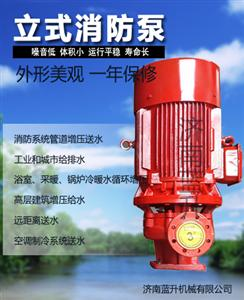 青岛大楼大厦公寓消防系列喷淋泵厂家