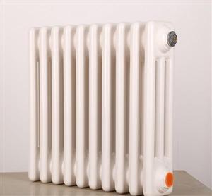 GZ3-1/600-1.0型钢制柱型散热器
