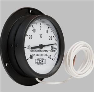 威科温度表/冷库温度表/F87-R60-