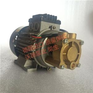 WD-016L原装Aulank热油泵