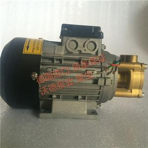 WD-016SL-200高温热导油泵