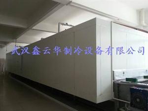 网带式速冻隧道