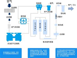 海思沃德氧生系统  室内空气净化  负氧离子