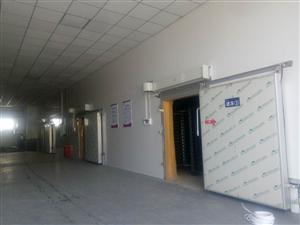低温冷库安装丨低温医药冷库建造丨低温贮藏库_程圣制