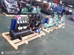 全新正品 低温冷冻肉类冷库制冷机组 4S151D 沈阳谷轮