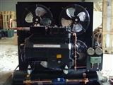 谷轮半封闭风冷机组、ZB系列保鲜设备、全封闭一体设备