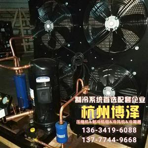 谷轮全封闭压缩机组 ZB29(4匹) 敞开式谷轮冷库机组