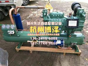 全新 杭州比泽尔机组 6WD30.2 水冷式半封闭机组 低温