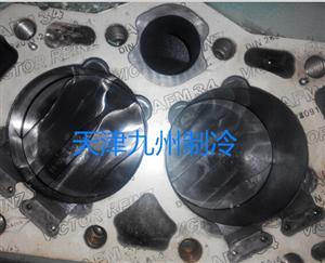 冷库比泽尔活塞式压缩机电机维修