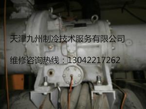 复盛SRG-200螺杆式制冷压缩机维修