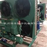 杭州比泽尔风冷机组4YG-20.2风冷机组