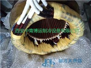 螺杆压缩机耐氟电机维修