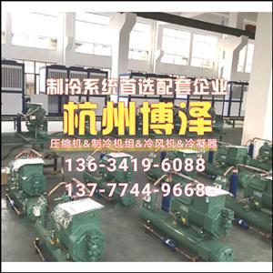 9匹水冷式冷凝机组小型冷库制冷机组配4YG-9.2杭州比泽