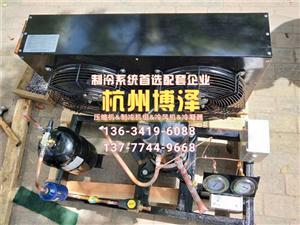 谷轮制冷压缩机组6匹 ZB45 谷轮ZB中温系列