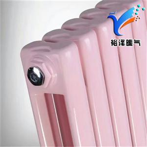 钢二柱暖气片家用工程钢制壁挂式散热器可定制防腐