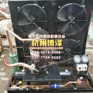 艾默生涡旋全封闭风冷机组ZB76 10P风冷机组