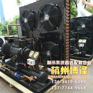 沈阳谷轮BFS151风冷机组 冷库制冷机组