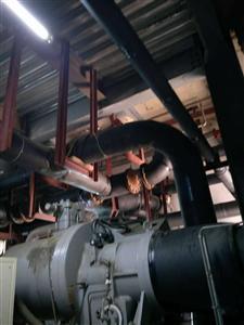 复盛SRG系列螺杆式制冷压缩机维修服务