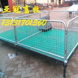 复合板仔猪保育床价格优惠
