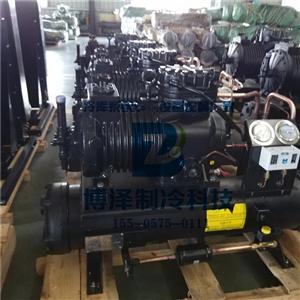博泽谷轮水冷式活塞压缩冷凝机组