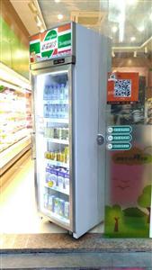 �伍T�料展示冰柜立式冷藏保�r柜便利店啤酒�列柜批�l