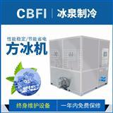 CV1000方冰机